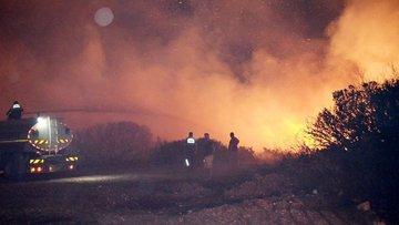 Didim'de 15 hektarlık makilik alan kül oldu