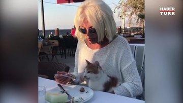 Ajda Pekkan sokak kedisini elleriyle besledi