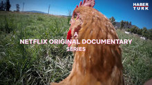 2018 yılına damgasını vuran 8 Netflix belgeseli
