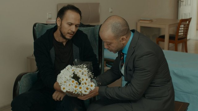 Aliço, Selim'le karşılaşıyor!
