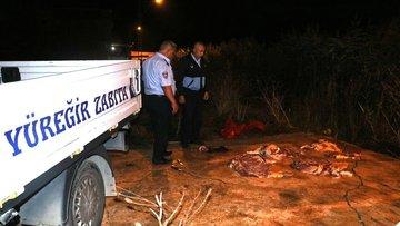 Adana'da gece yarısı baskını! 400 kilogram at eti ele geçirildi