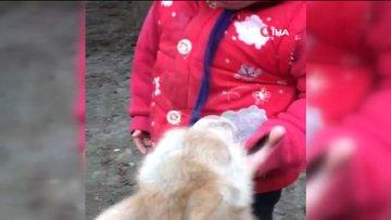 Ağrı'da bebek ile keçi yavrusu gülümsetti