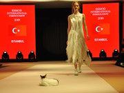 Modellere eşlik eden kedi...