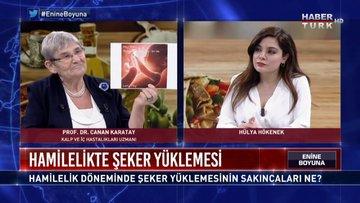 Enine Boyuna - 1 Şubat (Prof. Dr. Canan Karatay)