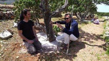Sakız Adası - Ayhan Sicimoğlu ile Renkler (7 Haziran 2017) 3.Bölüm