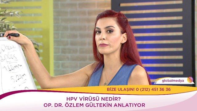 HPV virüsü nedir?