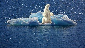 İklim değişikliğinin tarıma etkileri