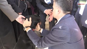 Görme yetisini kaybeden köpeğe Bakan Pakdemirli sahip çıktı