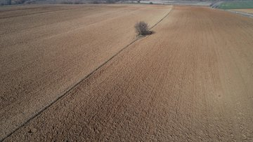 Küresel iklim değişikliğinin tarım sektörüne etkileri