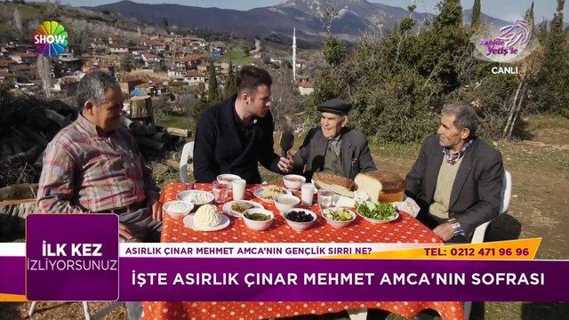 Asırlık çınar Mehmet Amca'nın sırrı ne?