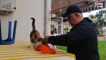 Sokak kedileri için dükkanını kapatmıyor