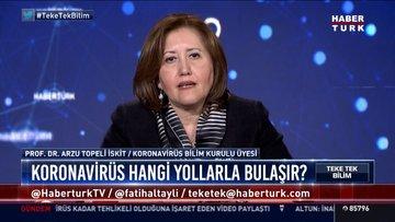 Koronavirüs nasıl yayıldı, salgın ne durumda?