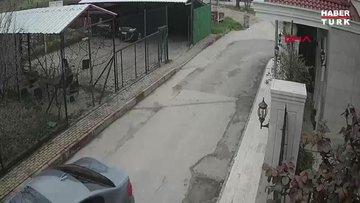 Otomobiliyle gelip, sokak köpeklerine ateş açan saldırgan aranıyor