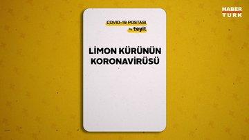 Limon kürü koronavirüsü yok eder mi?