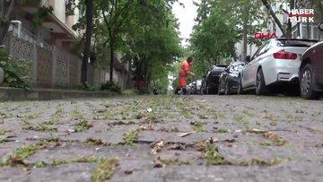 Koronavirüs nedeniyle evde kalındı, Avcılar'da sokaktaki yollar yeşerdi