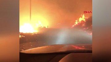 Kaliforniya'da orman yangını!