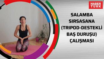 Salamba sirsasana (tripod-destekli baş duruşu) çalışması