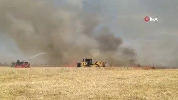 Ateşe verip kaçtılar...600 dönüm buğday ekili tarla küle döndü