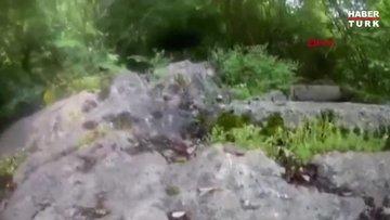 Çekim yaparken 1 metre uzunluğundaki boynuzlu engerek yılanı saldırdı