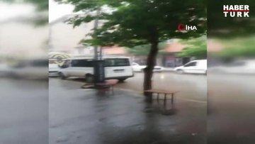 Şiddetli yağmur ve fırtına ağaç devirdi