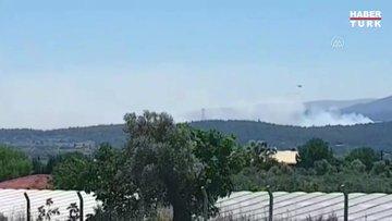 İzmir'in Urla ilçesinde orman yangını çıktı