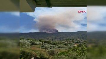 Aydın'ın Çine ilçesinde çıkan orman yangını Muğla Yatağan'a ulaştı