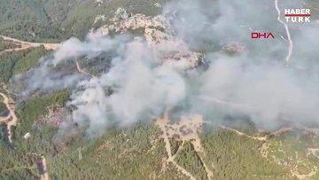 Menderes'te, ağaçlandırma sahasında yangın