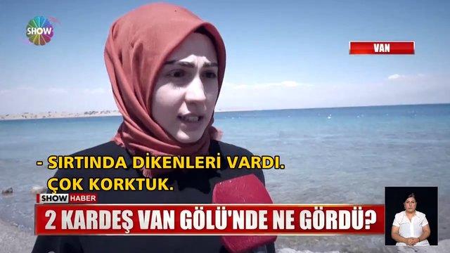 Van Gölü'nde esrarengiz cisim iddiası!