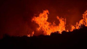 Bakanı Pakdemirli'den Çeşme'deki yangına ilişkin açıklama