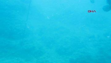 'Deniz dibindeki hayalet ağlar, ekosistemi çökertiyor'