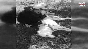 Komşunun öldürdüğü köpeğin sahibi O benim oğlumdu, benden aldı