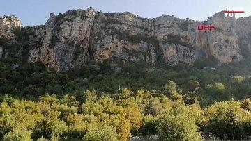 Mersin'de 8 bin yıllık kaya resmi heyecanı