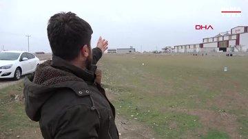 Arazide otlayan 26 koyun öldü, ölüm nedenlerinin belirlenmesi için çalışma başlatıldı