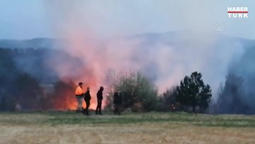 Muğla'da art arda orman yangını!