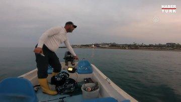 Amatör balıkçılar, ağlara takılan Caretta carettayı kurtardı
