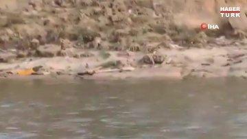 Ganj Nehri'nde koronavirüs hastalarına ait olduğu düşünülen çok sayıda cansız beden bulundu!