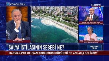 Deniz salyaları neden Marmara Denizi'ne akın etti? | Teke Tek Bilim - 23 Mayıs 2021