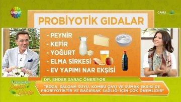 Probiyotik gıdalar nelerdir?