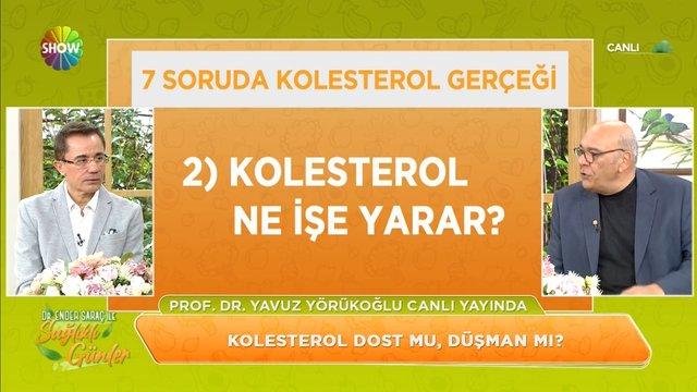 7 soruda kolesterol gerçeği