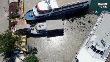 Bostancı'da müsilaj temizliği devam ediyor