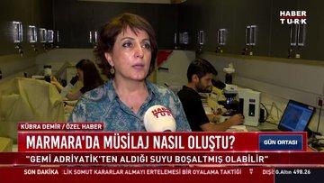 Marmara'da müsilaj nasıl oluştu?