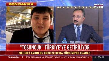 """""""Tosuncuk"""" Türkiye'ye getiriliyor"""