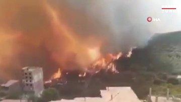 Cezayir'de orman yangınları: 42 ölü!