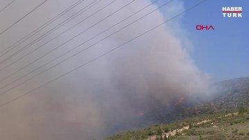 Çeşme'de orman yangını!