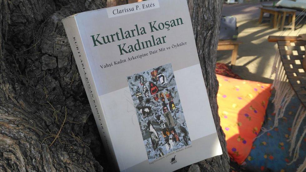 Kurtlarla Koşan Kadınlar kitabını, çevirmeni Hakan Atalay'la konuşuyoruz